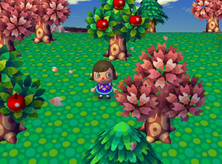 Animal Crossing Springtime