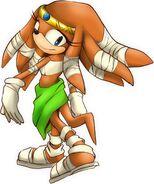 Sonic Boom Tikal
