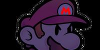 Shadow Mario (PMCS)