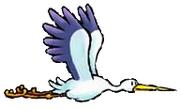 The Stork Yoshi's Partner