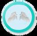 Angel Wings Item