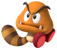 Golden Raccoon Goomba SM3DW