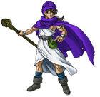 Dq5-hero