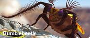 Bumblebeetle
