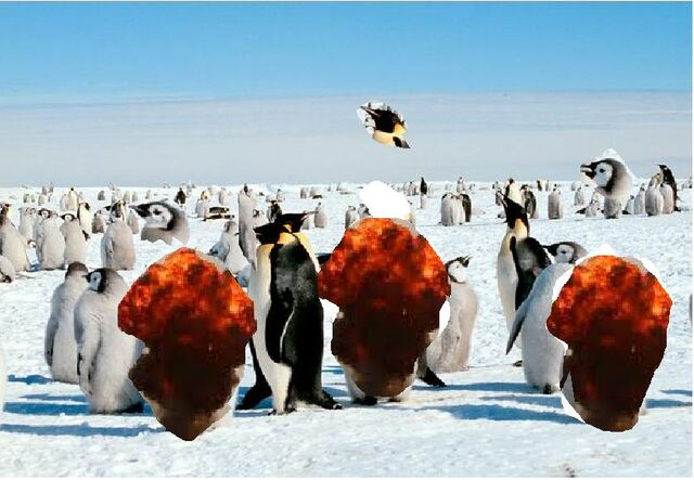 File:Exploding Penguins.jpg