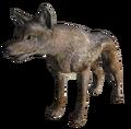 Coyote Fallout Origins