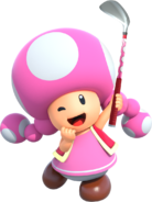 Toadette MGGT New