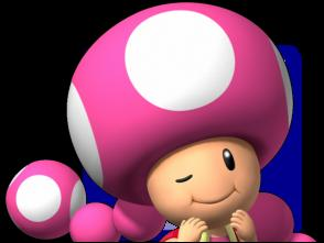 File:Toadette Icon SMBPB.jpg