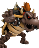 Dry Bowser 04 Brown CSP