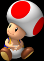 Toad MPNLands