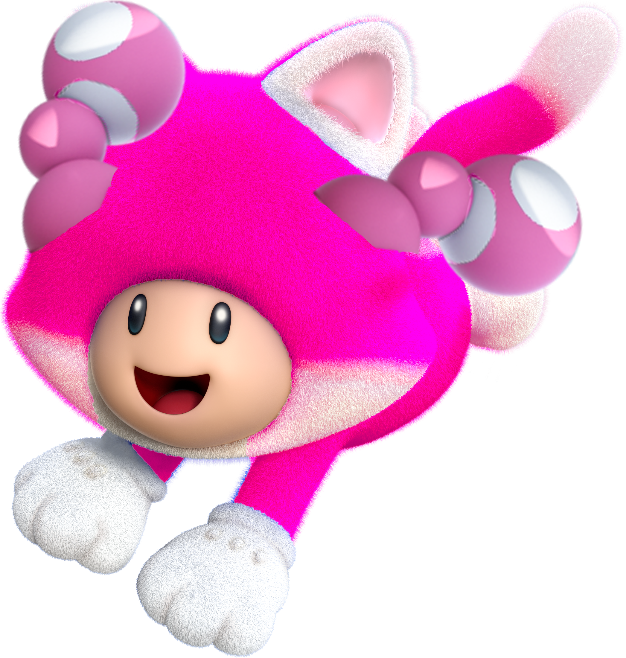 1000  images about toadette on Pinterest | All mario games ...