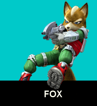 NSM Fox.dojo