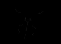 HeroforceSecret4