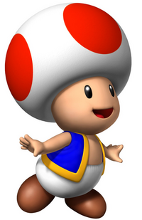 Toad for sttsg