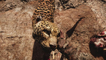 Far cry primal jaguar