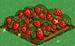 Strawberry extra100
