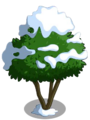 Avocado Tree7-icon.png