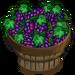 Grape Bushel-icon