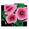 Hollyhock-icon