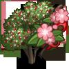 Midland Hawthorn Tree-icon