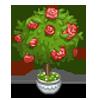 Rose Bush-icon