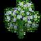 Green Man Tree-icon