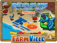 LS Rio Farm