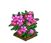 Perfect Alpine Rose-icon
