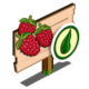 Organic Raspberry Mastery Sign-icon
