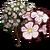 Big White Trumpet Tree-icon