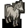 Connemara Pony-icon