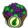 Organic Grape Bushel-icon