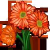 Orange Daisy-icon