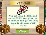 Mystery Box Red Bike