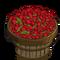 Raspberry Bushel-icon