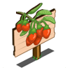 Goji Berry Mastery Sign-icon