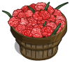 Pink Carnation Bushel-icon
