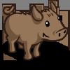 Island Pig-icon