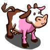 Neapolitan Cow-icon