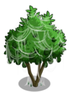 Avocado Tree4-icon
