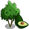 Avocado Tree-icon.png