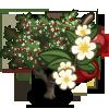 Hawthorn Tree-icon