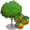 Mandarin Tree-icon