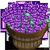 Sage Bushel-icon