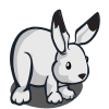 Arctic Hare-icon.png