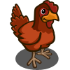 Rhode Island Red Chicken-icon