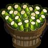 Australian Sugar Cane Bushel-icon
