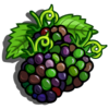 Jungle Blackberry-icon