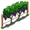 Grape Vines-icon