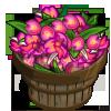 Hawaiian Orchid Bushel-icon